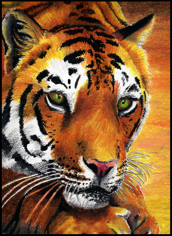 Tiger - in Oil Pastel by bhishma