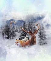 Winter is beautiful by oliviou-krakus