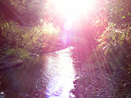 sun over the creek by frogking