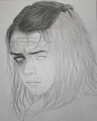 Arya WIP