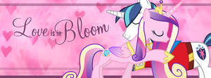 Happy Hearts and Hooves Day! Facebook Cover
