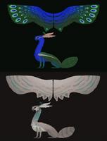 pea-moth, semi-open species by draggon-rider2