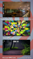 3 GNU Linux Distributions - 3 Desktop Setups