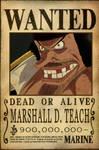 Blackbeard Wanted Poster