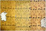 Pikachu Tessellation