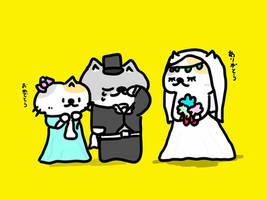 wedding cat by kusaman