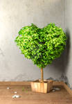 Tree in shape of heart