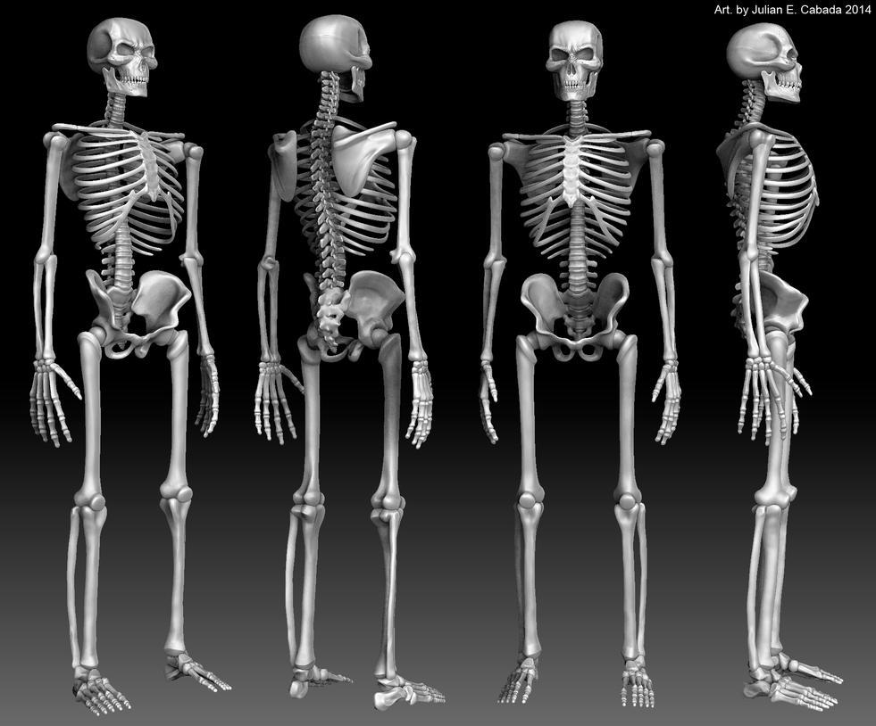 Heavy Metal Skeleton by asgard-knight
