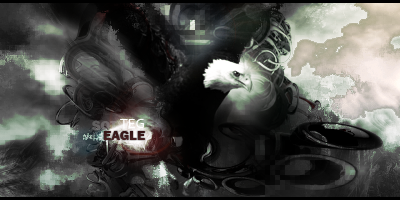[Image: eaglenature_by_teg_ready-d6isekl.png]