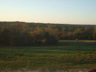 Meadow by GraveRobberEqui