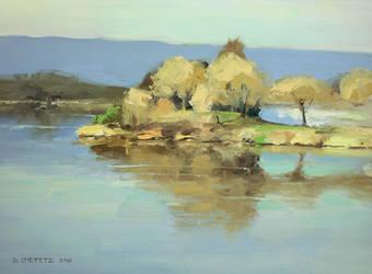 plein air shoreline lake by turningshadow