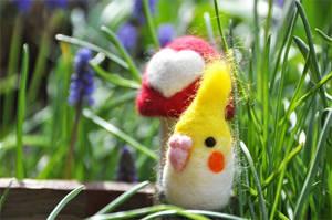 Wool Bird