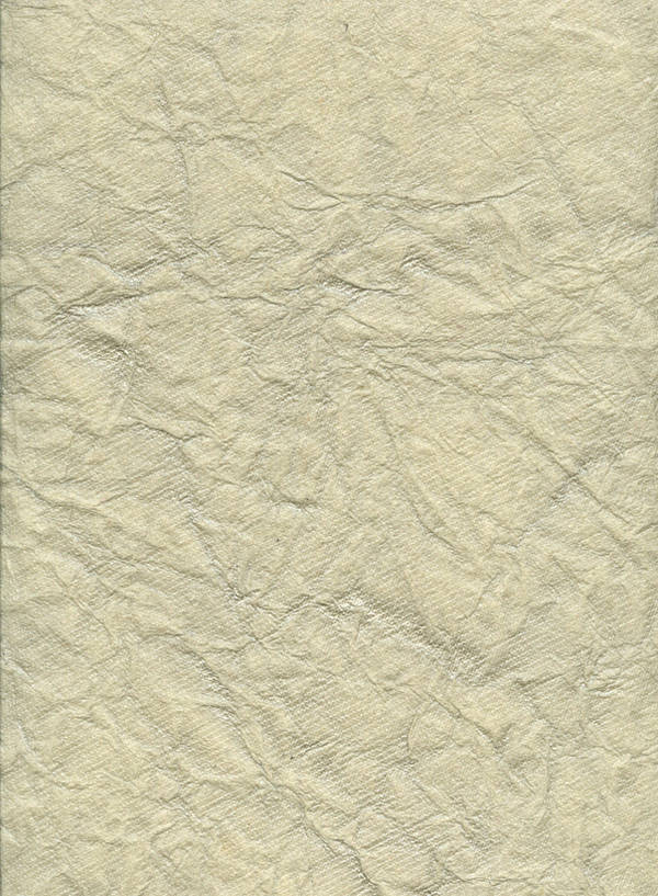 crinkled paper texture by chokingonstatic