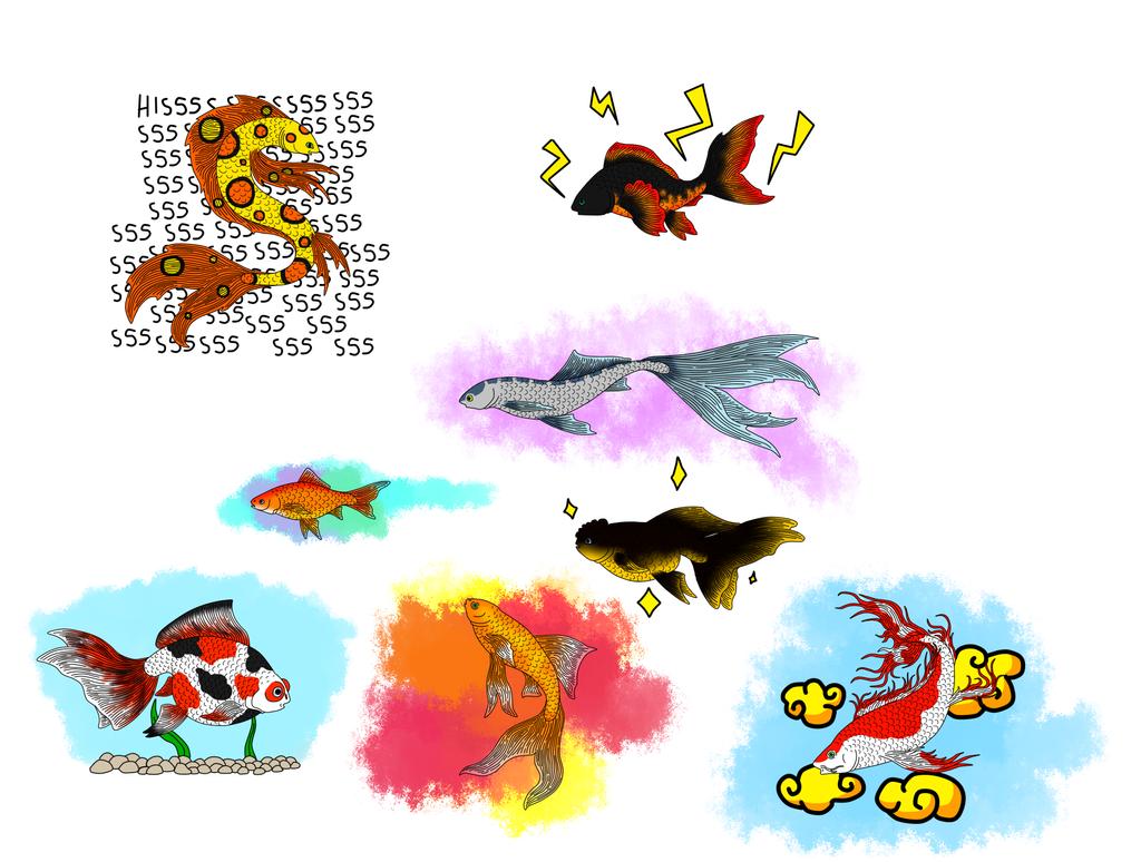 Goldfish and Strange Goldfish by ColdBlod23