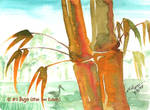 Bamboo Watercolor