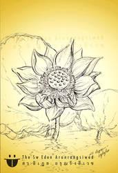 Thai Water Lily Lotus Flower In Pen