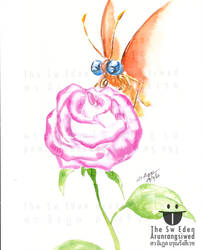 Golden Butterfly Eating Honey From Pink Giant Rose