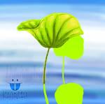 SketchBook: Lotus Leaf