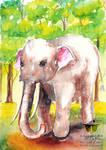 White Elephant Look Good Watercolor