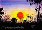 Mango Tree and Sunset