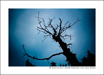 Dark Tranquility by sandervandenberg