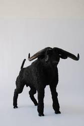 Bufalo del golfo -muselang-