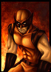 request 3: X men wolverine by flo-moshi