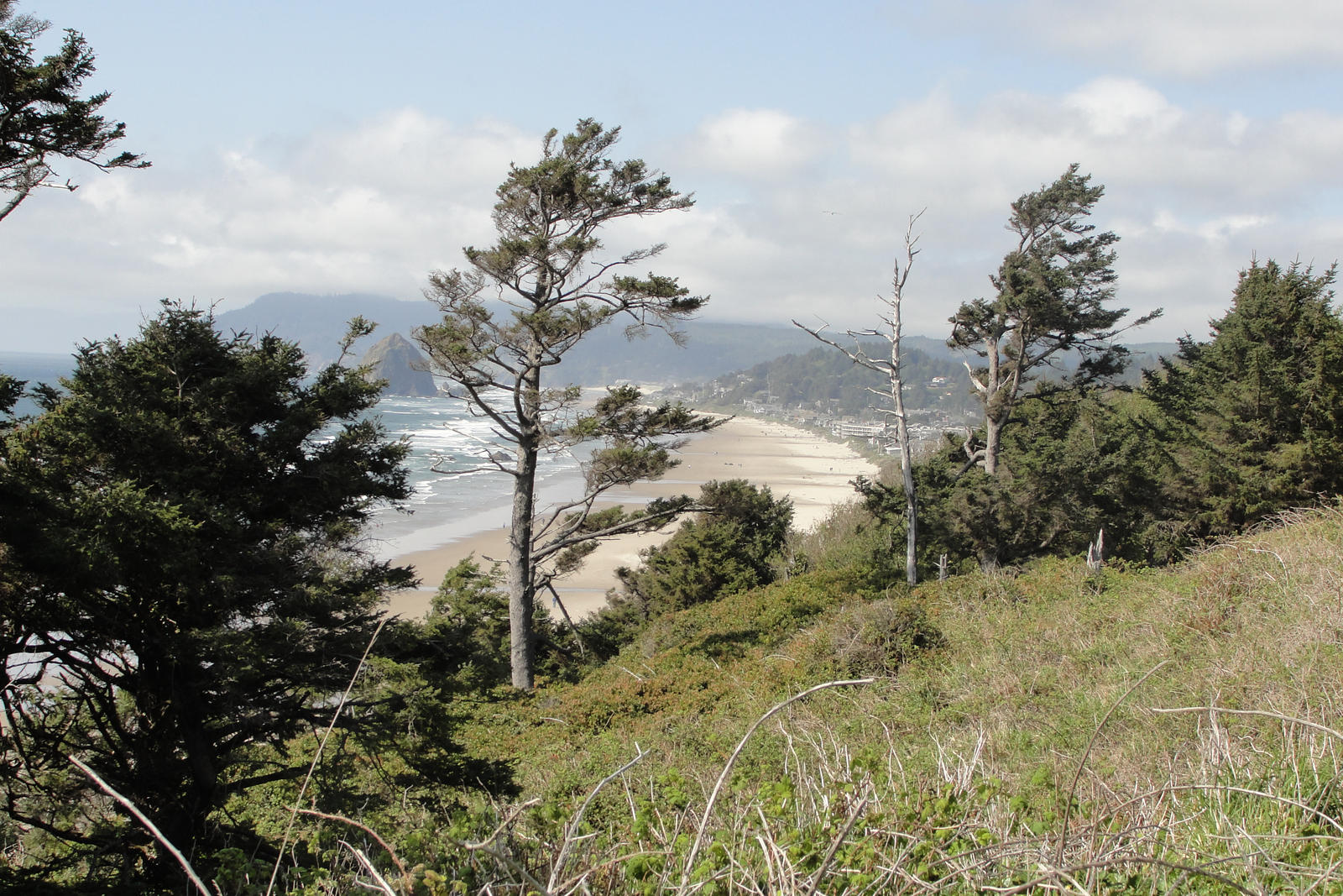 City Data Cannon Beach Oregon
