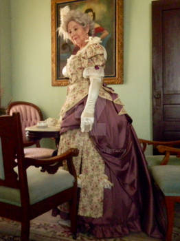 Godey Lady's Book 1880 Gown