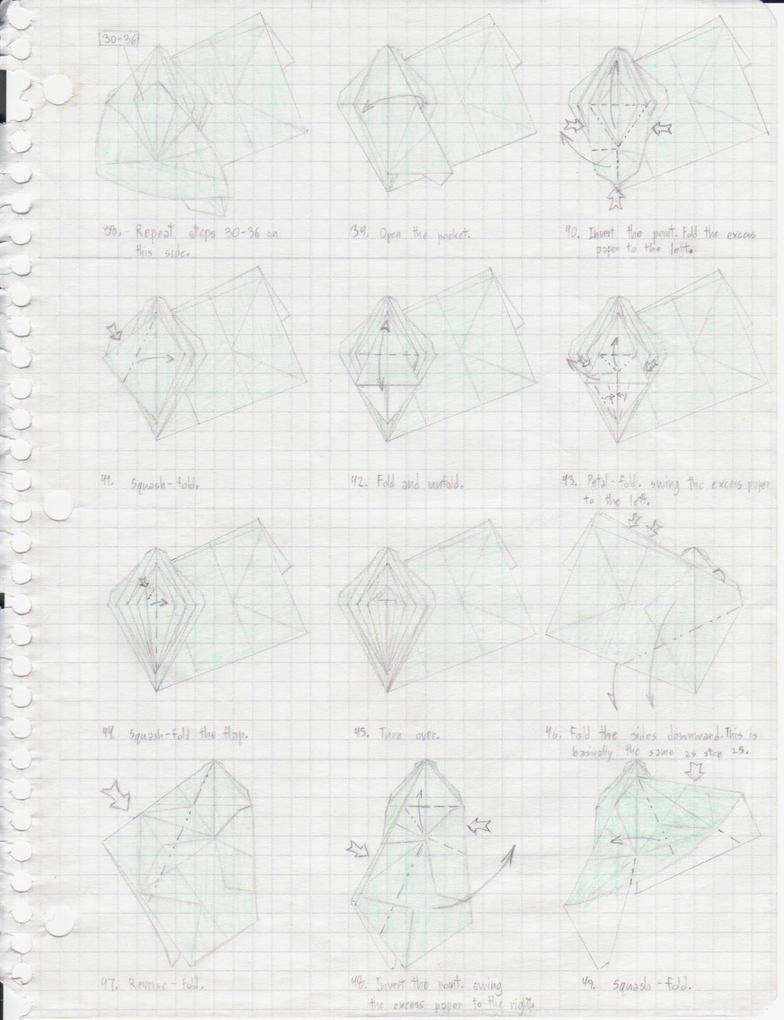Atlas Beetle Diagrams P4 By Origami