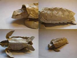 Loggerhead Sea Turtle Details by origami-artist-galen