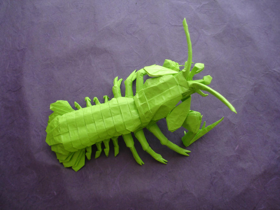 Origami Mantis Shrimp Ermakov By Artist Galen