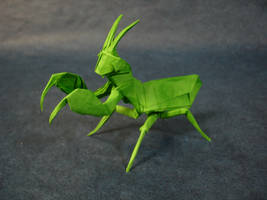 Origami Praying Mantis by origami-artist-galen