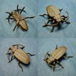 Origami Titan Beetle