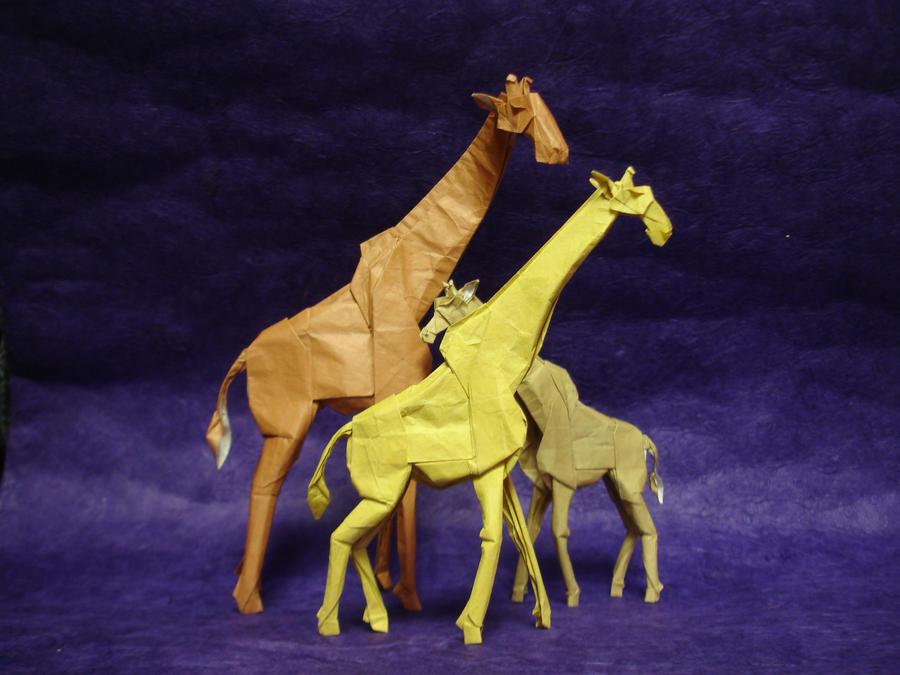 Origami Giraffes by origami-artist-galen