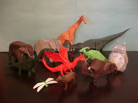 Origami in Past Year