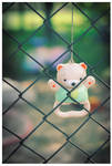 Behind the wire fence