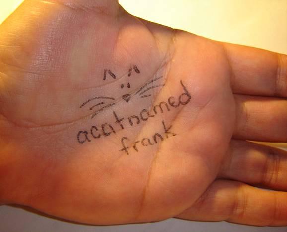 acatnamedfrank's Profile Picture