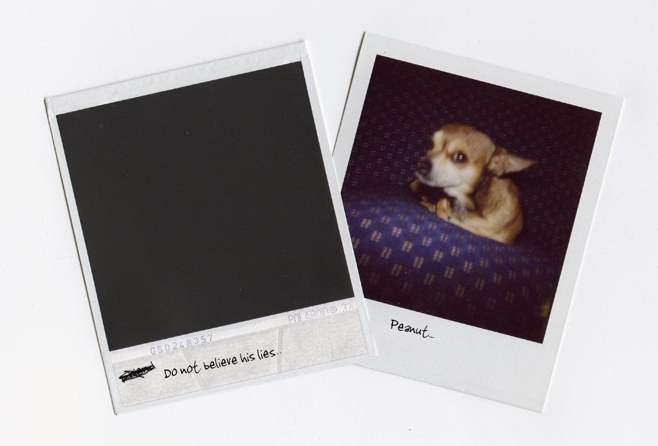 Memento Polaroid Peanuts memento by childproofMemento Polaroid