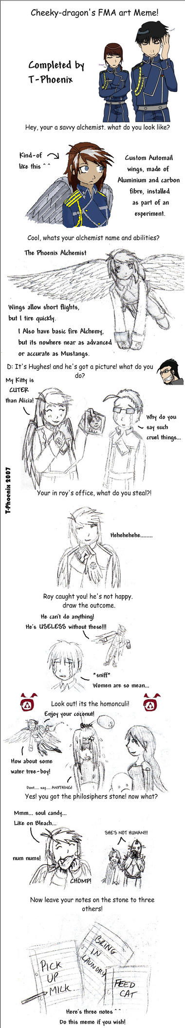 FMA Meme by Heliotrope-Housecat