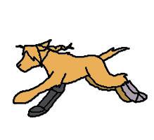 Ed Dog Running by Heliotrope-Housecat