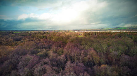 spring is coming - Antrim - N.Ireland - drone by atenytom