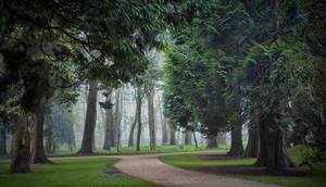Antrim Garden - N.Ireland