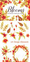 Blooms Floral Handdrawn Watercolor Clip Art