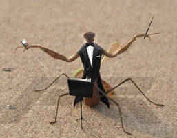 Mantis Conductor by PixelRave