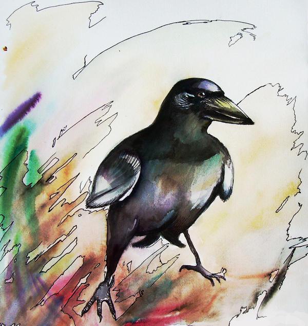 crow by srebrinaM