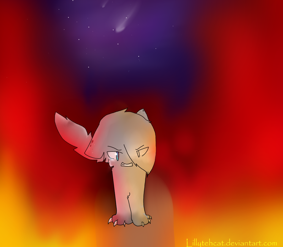 Ashfur'z Fire Scene by Lillytehcat