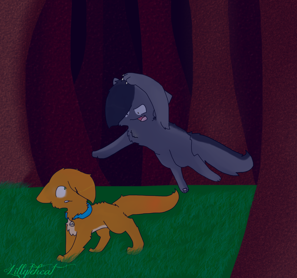 Rusty vs graypaw by Lillytehcat