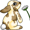 [F2U] Bunny by Legendarypixel