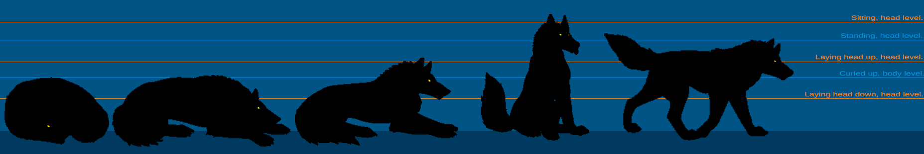 Pose sizing chart. Size_chart_dire_or_larger_canines_by_fezsinner-dbts28o